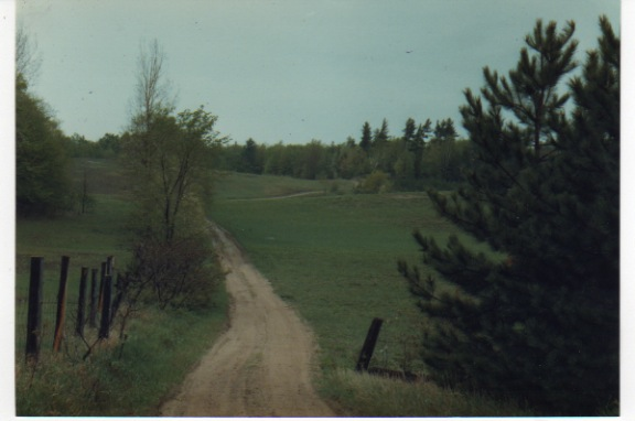 Section of mile long driveway